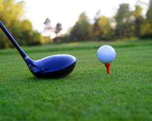 backyard golf, Elite Pools