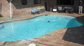 Freeform Pool with Steps