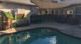 Freeform Pool with Pool Cleaner