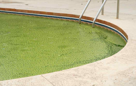 elite pools and spas houston pool service and cleaning
