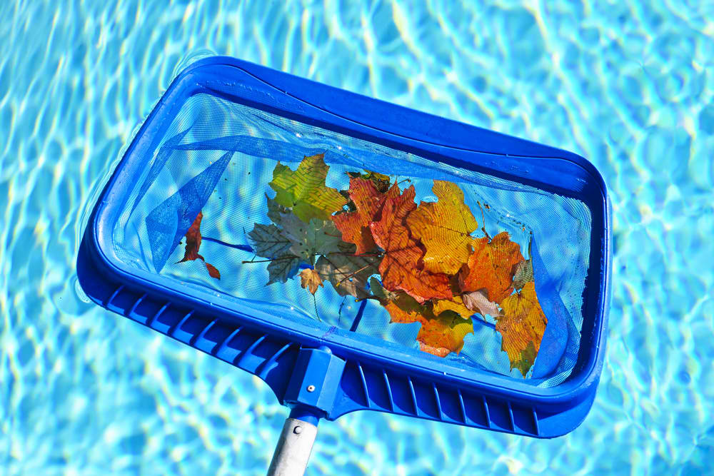 Fall Pool Maintenance: Keeping Up With Debris